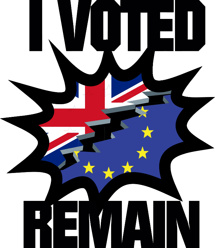TenStickers. Brexit laptop sticker wall decor. If you are a remainer and voted to stay then let everyone know with this laptop sticker. A simple design with the words 'I voted remain'