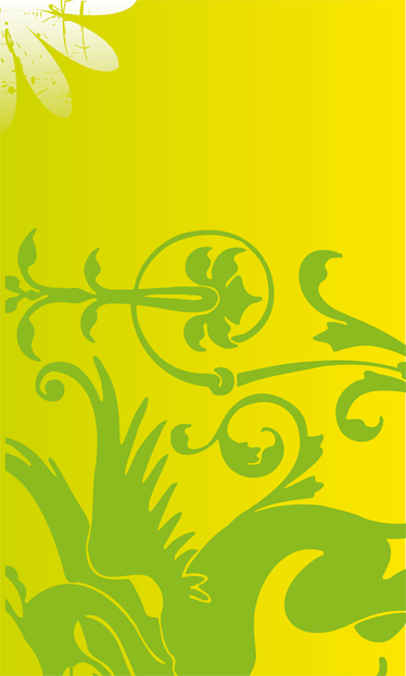 TenStickers. Sticker decorativo dragone verde. Un elegante dragone verde per tutti gli appassionati di mitologia. Decora la porta della tua camera da letto con questo originale adesivo.