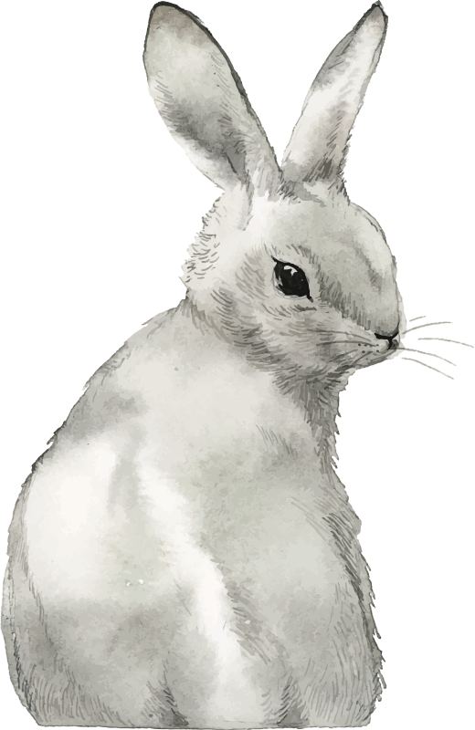 TenStickers. Rabbit Bunny farm animal sticker. Farm animal wall decal for kids bedroom or anywhere you choose.This is a design of rabbit that you will love. Easy to apply design on flat surface.
