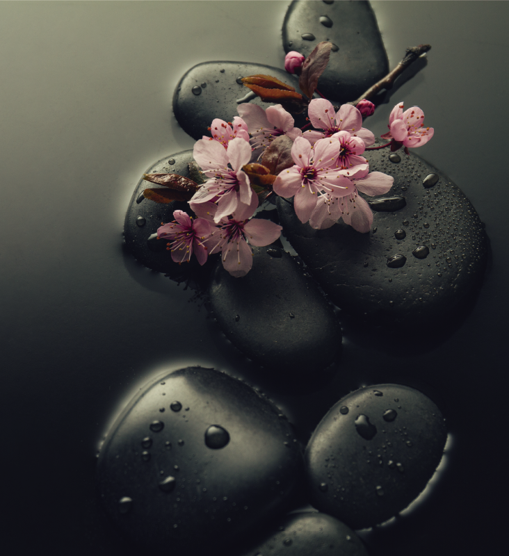 TenStickers. Sticker ambiance zen avec salle de bain en pierre. Un sticker décoratif de plantes à fleurs conçu dans une très belle couleur que vous pouvez utiliser pour vos toilettes assis ou n'importe où dans la salle de bain. Facile à appliquer.