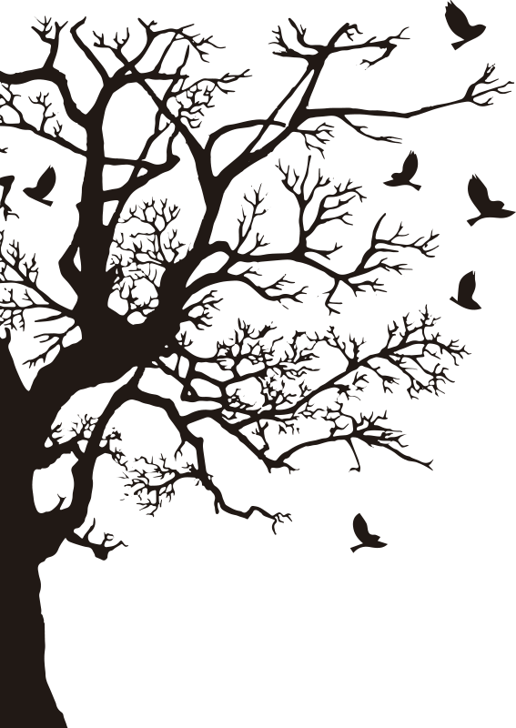 TenStickers. Branches window decal. Easy to apply window decal created with a tree with branches and birds on it. You can have the design in any colour you prefer.
