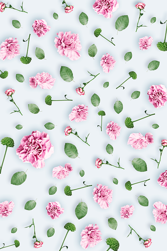 TenVinilo. Vinilo adhesivo para ventana de flores. Nuestro vinilo de vinilo de ventana translúcido de flores fácil de aplicar creada para decorar la ventana la sala de estar para agregar un toque de belleza al hogar.