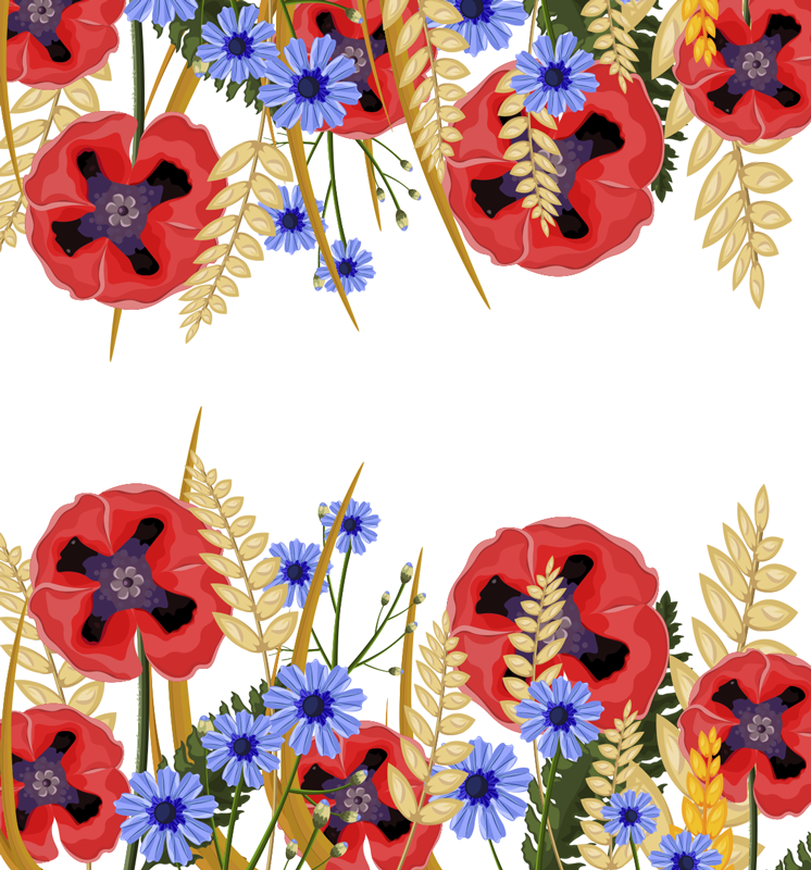 TenStickers. Polish poppy plants frame window decal. Easy to apply window frame decal created with a poppy plant in pretty colour that can applied on the surface of the living room window.