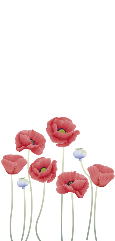 TenStickers. Shower screen of poppies window decal. A window sticker of poppies flowers to decorate every window space in the home.Easy to apply design on any flt surface and you can buy it in any size.