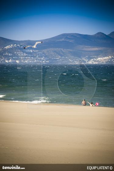 TENSTICKERS. 風の強いビーチ写真壁画. 潜在的なestudiが撮影した写真の素晴らしいデザイン。私たちの海壁ステッカーコレクションからの素晴らしいデザイン。休日に行くのが好きですか?