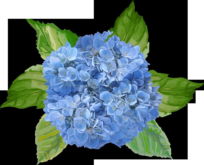 TenStickers. Blauwe bloemen muursticker. Decoratieve muursticker voor thuis met het ontwerp van een geweldige en bloeiende bloem. Kies het in de beste maatoptie, ideaal voor een perfecte ruimte.