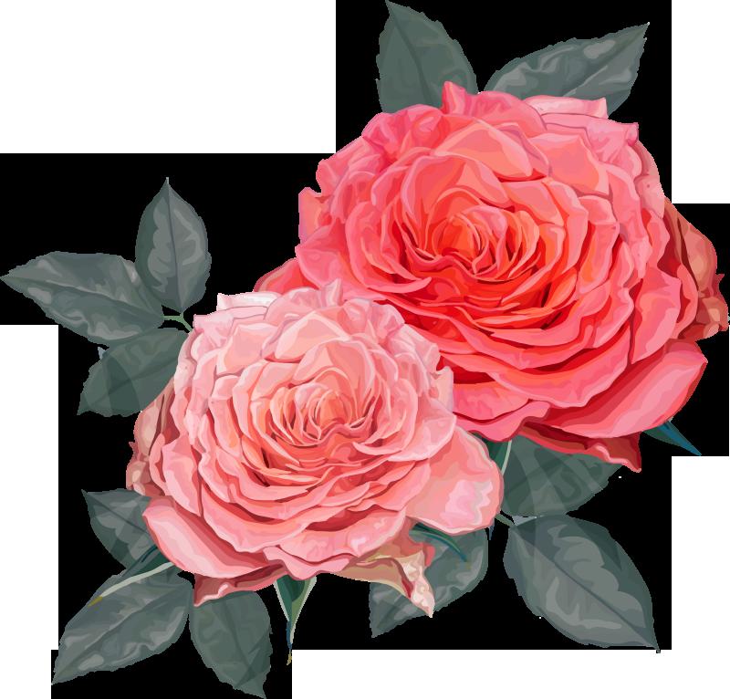 TenVinilo. Vinilo decorativo de dos rosas preciosas. Hermoso vinilo decorativo de flor de rosas bonitas para decorar cualquier espacio en el hogar para iluminar el ambiente ¡Envío a domicilio!