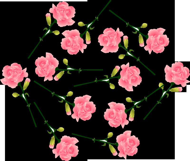 TenStickers. Rosa Nelken Wandtattoo. Dekoratives Wandtattoo im Blumen Design von rosa Nelken, um den Wohnraum zu verschönern. Wählen Sie es in der am besten geeigneten Größe. Einfach anzuwenden.