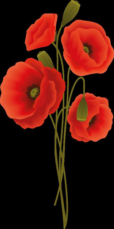 TenStickers. Vinil decorativo de flores Delicada-semente de papoila. Autocolante decorativo para casa de banho com o desenho de uma delicada flor de papoula. Um design de flores único e bonito.