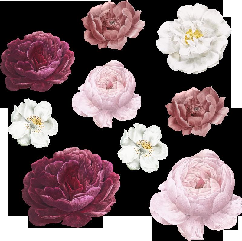 TenStickers. sticker dei fiori rosa e bianchi. Adesivo decorativo da parete con fiori petalo colorato per decorare lo spazio domestico. Adorabile sia per la vita che per la camera da letto. Disponibile in qualsiasi dimensione richiesta.