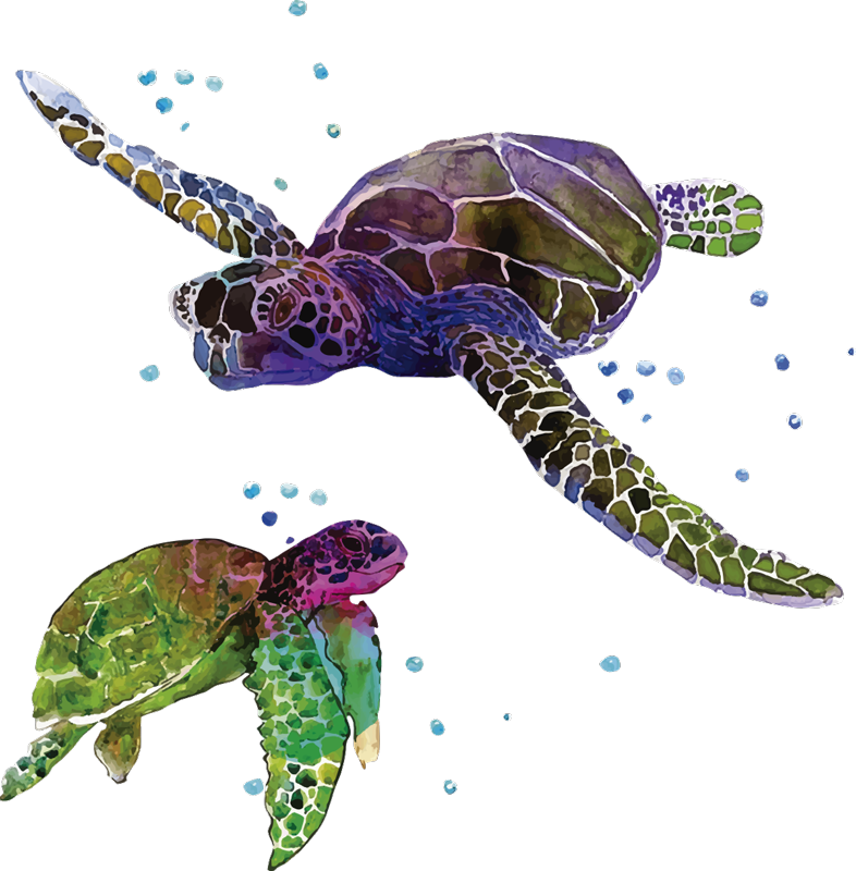 TenStickers. Colorful abstract turtles animal sticker. Adhesive animal wall art decal with the design of colorful turtles. It is easy to apply and self adhesive. It is available in any required size.