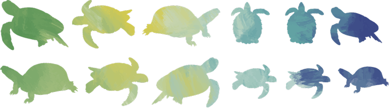 TenStickers. Colorful turtle pack animal sticker. An adhesive animal vinyl wall sticker with the design of colorful prints of turtles. We have it in any size required and it is self adhesive.