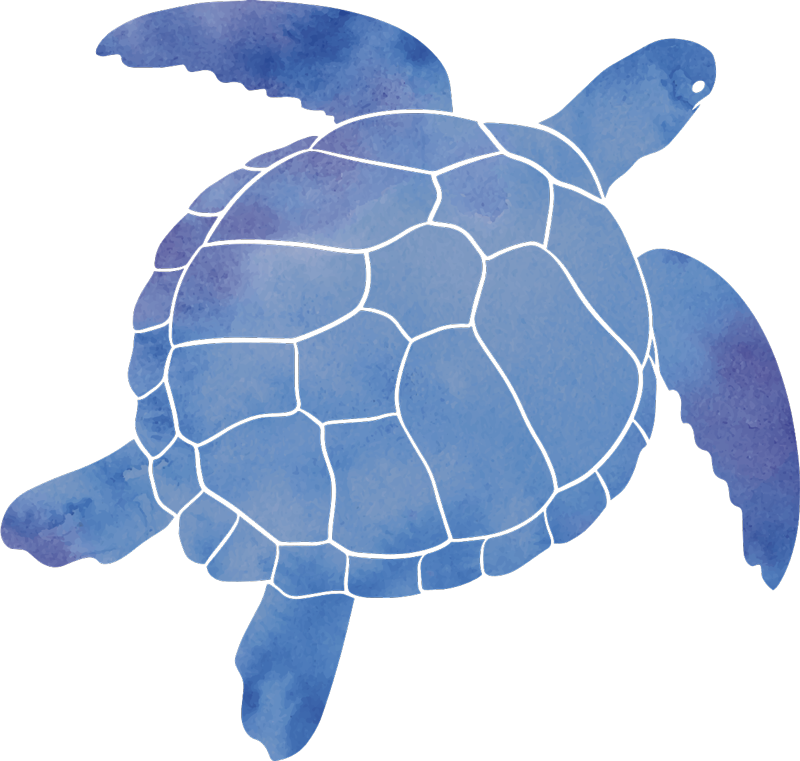 TenStickers. Decolteu modern și colorat de animale de broască țestoasă. Autocolant modern și colorat de perete animal pentru broască țestoasă pentru decorarea casei. Este un tipar mare cu broască țestoasă, într-o culoare frumoasă. Este ușor de aplicat și adeziv.