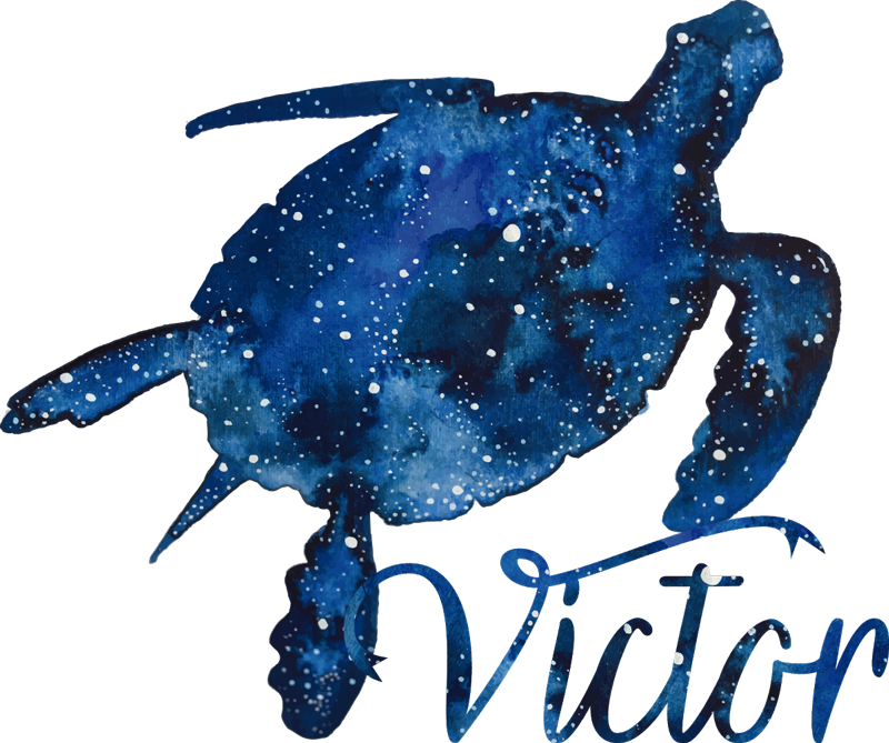 TenStickers. Turtle with galaxy pattern and name animal wall sticker. Personalisable a name on our turtle wall art decal with prints of galaxy patterned on it. It is available in any required size.