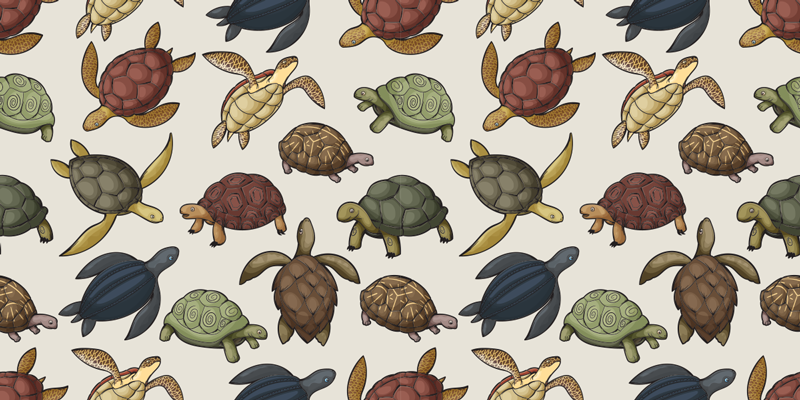 TenStickers. Variety of turtles furniture decal. Decorative turtle prints furniture sticker to decorate the furniture in the home. It is available in any required dimension.