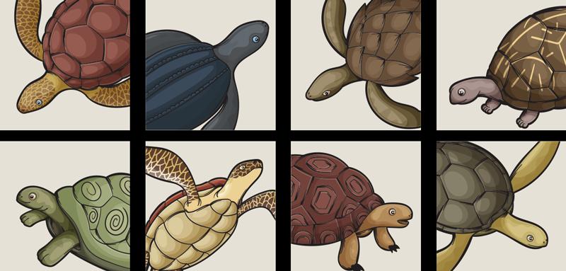 TenStickers. Varietate de țigle de transfer. Autocolant decorativ cu gresie pentru animale de broască țestoasă cu imprimeuri de broaște țestoase colorate pentru a decora un spațiu de bucătărie sau baie cu suprafață de gresie.