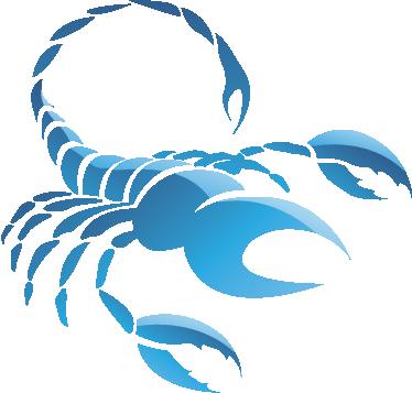 TenStickers. Sticker decorativo zodiaco Scorpione. Per tutti i nati tra ottobre e novembre, ecco un adesivo murale che raffigura lo scorpione. Il tuo segno zodiacale per decorare la tua camera da letto.