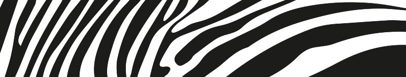 TenStickers. Zebra pele imitação bicicleta vinil autocolante decorativo. A imitação de pele de zebra será um incrível autocolante de quadro de bicicleta que todo mundo adora. Fácil de aplicar e disponível em qualquer tamanho que precisar!