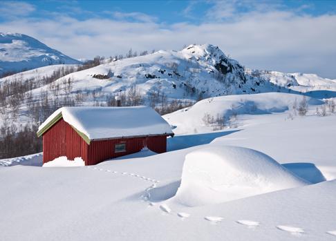 TENSTICKERS. 雪のリビングルームの壁の装飾で覆われた家. あなたの好みの部屋をどのように飾るクールな方法!この雪の風景の壁のデカールは、あなたが冬にいれば理想的な方法です。