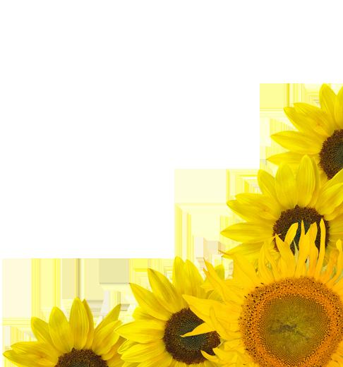 TENSTICKERS. ヒマワリの家の壁のステッカー. このひまわりのステッカーは、花を愛し、一年中春や夏のように感じたいすべての人に最適です!