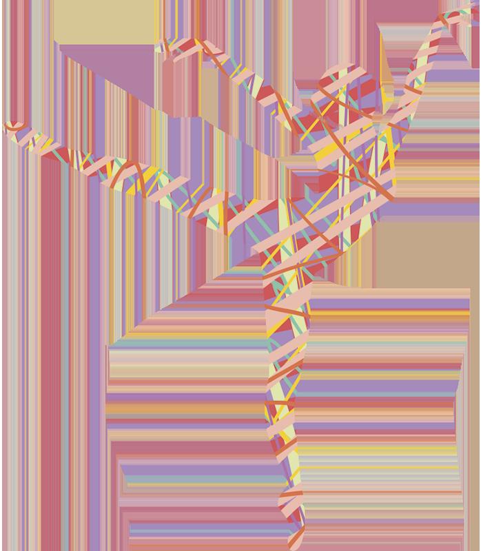 TenStickers. Autocolantes Decorativos de Baile Linda dançarina. Lindo vinis decorativos de dançarina enfardadeira o design é um vinil autocolante decorativo da silhueta de uma personalidade de dança, é feito com vinil da melhor qualidade e fácil de aplicar.