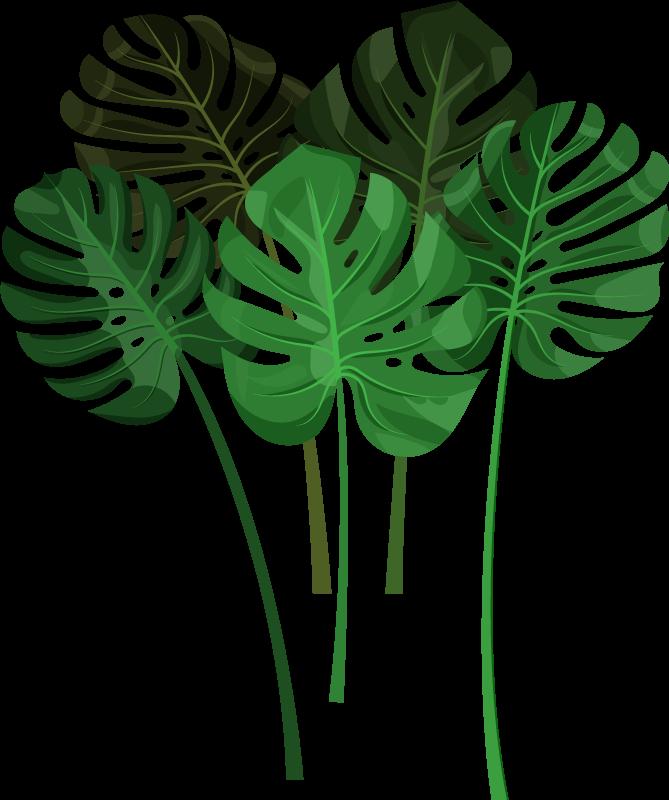 TenVinilo. Vinilo de plantas conjunto hojas monstera. Vinilo decorativo plantas con hojas monstera que te ayudará a tener una decoración más única y natural ¡Envío a domicilio!