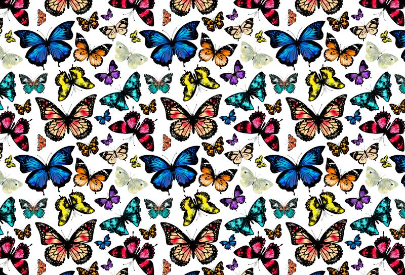 TENSTICKERS. 美しく、カラフルな蝶のラップトップのデカール. ラップトップのための美しい装飾的な蝶のステッカー。やわらかく優しいタッチであなたのデバイスを美しくする素敵なデザイン。