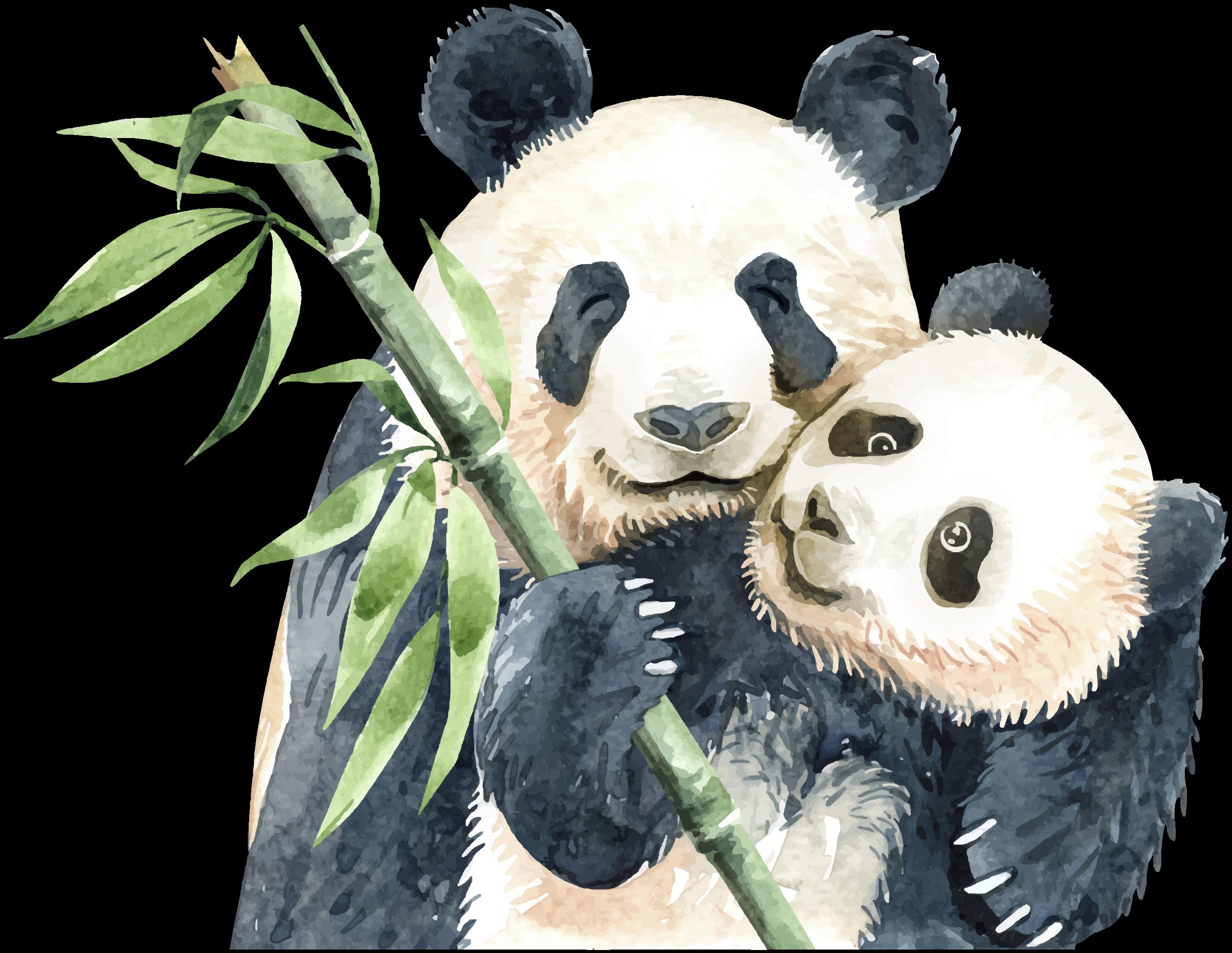TENSTICKERS. 木とパンダの木の壁のステッカー. かわいいパンダの絵を描くビニールステッカー。デザインは、木の枝に2匹のパンダを示しています。それはオリジナルで、粘着性があり、簡単に塗ることができます。