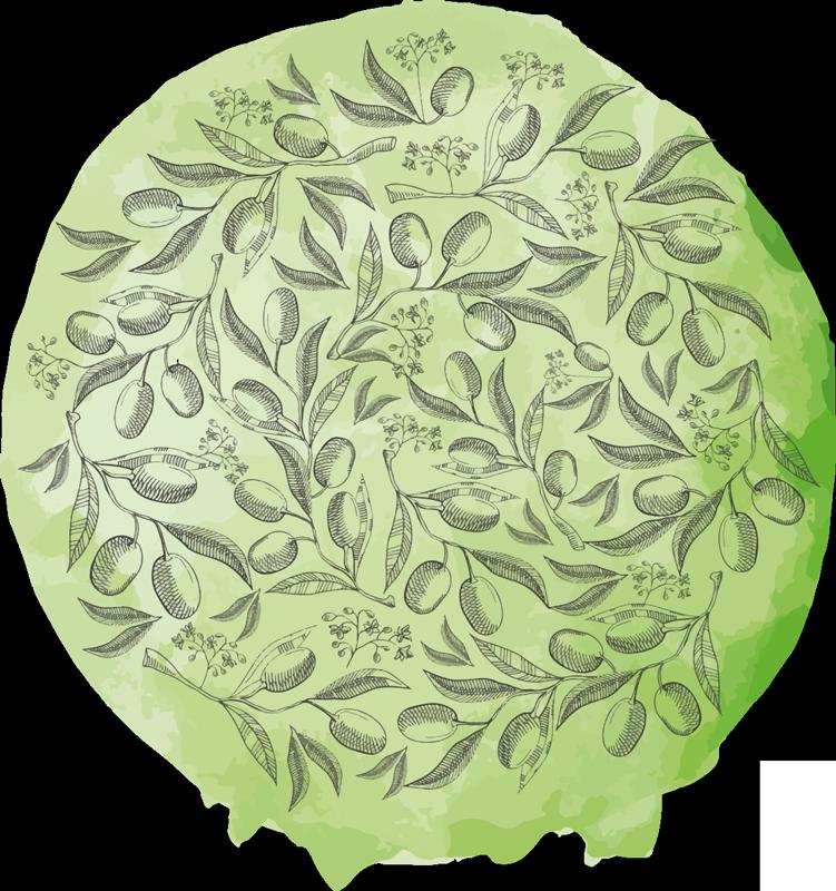 TENSTICKERS. テクスチャードグリーンオリーブブランチフードウォールステッカー. テクスチャード加工されたグリーンオリーブの枝のステッカーの素敵で美しいセット。居間、寝室、その他のインテリアエリアに最適です。