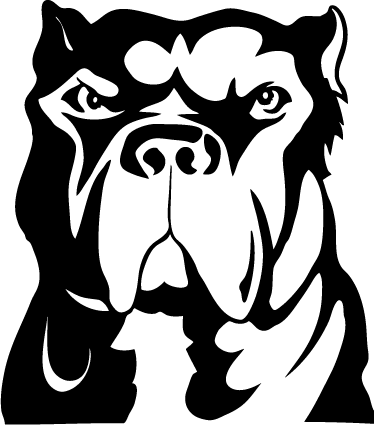 TenStickers. Pitbull Dog Wall Sticker. Wall Stickers - Illustration of an agressive pitbull dog. Ideal for dog lovers. Available in various colours and sizes.