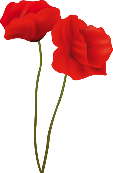 TenStickers. Two Poppies Wall Sticker. Two beautiful and elegant red poppies from our collection of poppy wall stickers to decorate any space at home.