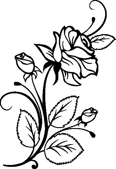 TenStickers. Trandafir decal profil. Decals - ilustrație de trandafiri florali pentru a străluci pereții plictisitori. Disponibil în diferite dimensiuni și culori.