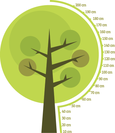 TenStickers. 树高图贴纸. 一棵树贴纸,用于测量孩子的身高并装饰家里的任何空间。出色的身高图贴花,个性化您孩子的房间。