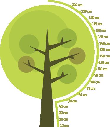 TenStickers. 나무 높이 차트 스티커. 자녀의 키를 측정하고 집안의 모든 공간을 장식하는 나무 스티커. 자녀의 방을 개인화하기 위해 화려한 높이 차트 데칼.