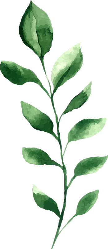 TENSTICKERS. 顕花葉植物デカール. 家の平らな壁面を美しくするための装飾的なシダ植物のビニールウォールステッカー。製品は、必要なカスタマイズ可能なサイズでご利用いただけます。
