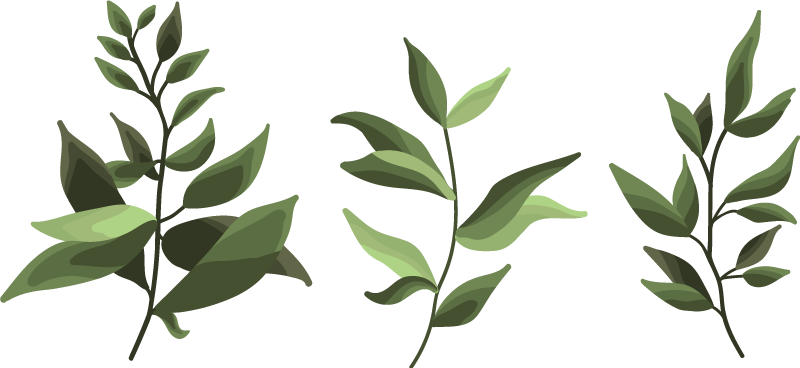 TENSTICKERS. 塗られた葉植物デカール. 家やオフィスのあらゆるスペースに心地よい植物の効果を生み出す、リアルな外観の塗装された緑の植物ビニールデカールデザイン。