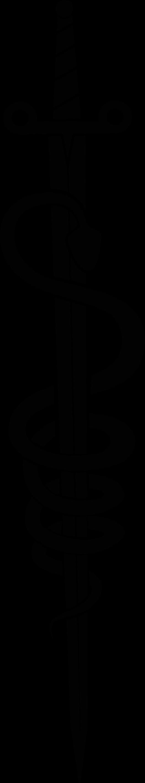 TENSTICKERS. ヘビオブジェクトウォールステッカー付きの剣. ヘビが巻かれた実例となる神話の剣オブジェクトウォールステッカー。色はカスタマイズ可能で、オリジナルで、耐久性があり、簡単に適用できます。