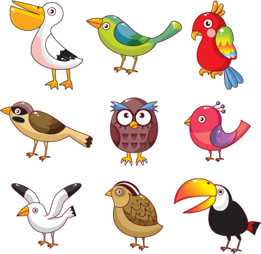 TenStickers. Bird Variety Wall Stickers. Kids Wall Stickers - Collection of various birds ideal for decorating areas for children. Fun and colourful.