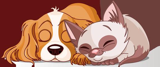 TenStickers. Autocolante infantil cão e gato a dormir. Autocolante infantil ilustrando um cão e gato a dormir, que farão companhia aos seus filhos enquanto eles dormem.