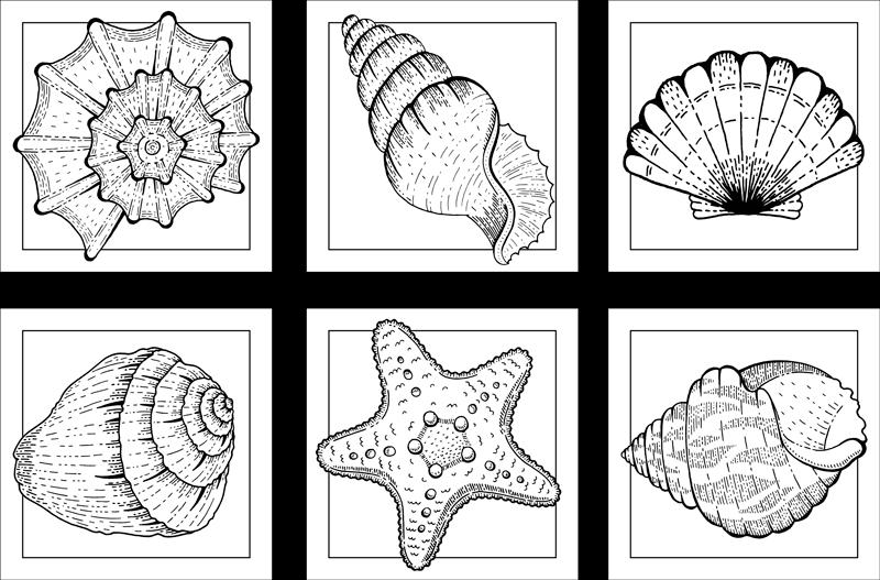 TENSTICKERS. 海洋生物と貝殻のタイル転送. 海洋生物と貝殻のタイルステッカー-さまざまな灰色の貝殻のデザインが白いタイルの背景に作成されています。どんなスペースにもぴったりのタイルステッカー。