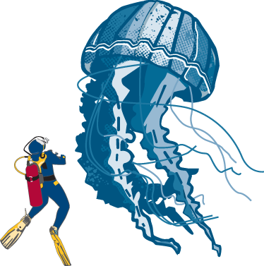 TenStickers. Diver and Jellyfish Wall Sticker. An illustration of a sea driver admiring a giant jellyfish! A magnificent decal from our collection of under the sea wall stickers.