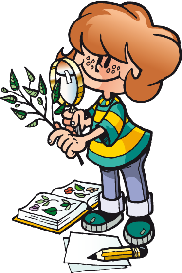 TenStickers. Botany Student Sticker. Sticker with an illustration of a young student looking at a tree branch through a magnifying glass.