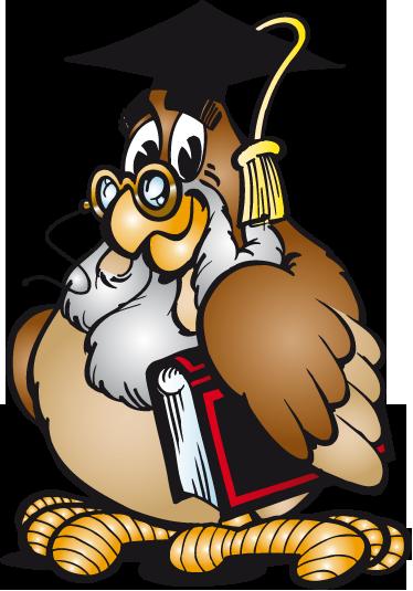 TENSTICKERS. フクロウ先生ウォールステッカー. キッズウォールステッカー-賢明なフクロウ先生の遊び心のあるイラスト。子供や教育施設の装飾エリアに最適です。