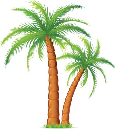 TenStickers. Palm Trees Wall Sticker. Palm Tree decals - A tropical wall sticker for any room. Decorate your home or business with an exotic touch  Available in various sizes.