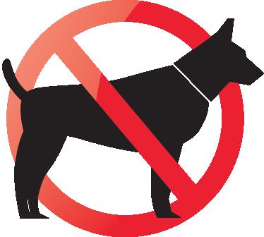 TenStickers. ни одна собака не разрешает наклейку. очень полезная наклейка, которая позволит всем знать, что собаки не разрешены в вашем магазине или дома. украсить любую гладкую поверхность, такую как окна вашего магазина. легко наносится и не оставляет следов при удалении, даже на окнах!