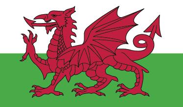 TenStickers. Nalepka za steno na zastavi wales. Visokokakovostna nalepka za steno zastave iz walesa kot nalašč kot dnevna soba ali spalnica, ki ponazarja svoj ponos velikega naroda.