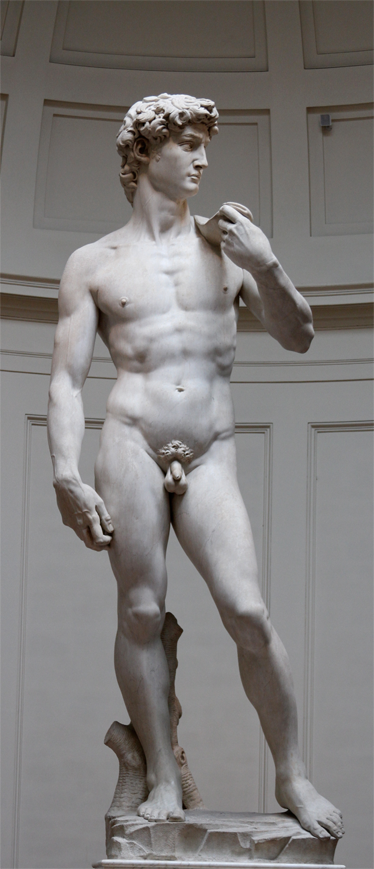 TenStickers. Fridge Sticker David Michaelangelo. Decorate your cabinets , refrigerators or anything similar with the fridge sticker representing David Michelangelo .