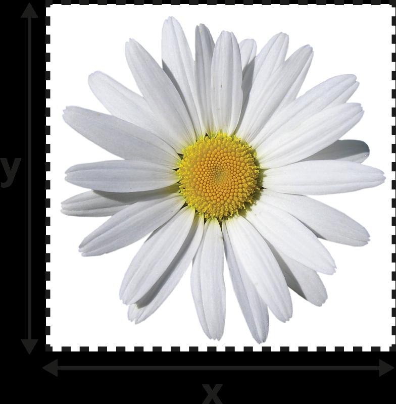 TenStickers. Sticker lichtschakelaar madeliefje. Decoratie sticker van een madeliefje om je lichtschakelaars op te fleuren. Decoreer de lichtschakelaars in je woning met deze sticker van een bloem.