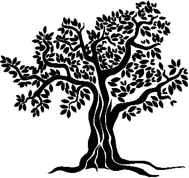 TenVinilo. Vinilo decorativo olivo monocolor. Espectacular dibujo en adhesivo monocolor de un viejo árbol de aceitunas.