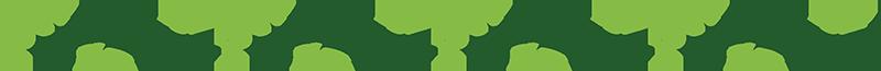 TenStickers. Yeşil sarmaşık sınır duvar sticker. Sizin yaşam fantastik bir görünüm ve atmosfer vermek için bitki duvar çıkartmaları yaratıcı koleksiyonumuzdan bir zarif yatay sarmaşık asma çiçek desenli. Uygulamak ve kaldırmak için kolay. çeşitli boyutlarda mevcuttur.